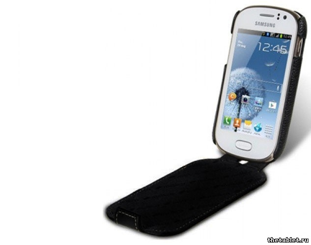 ����� Aksberry ��� Samsung Champ Neo Duos C3262
